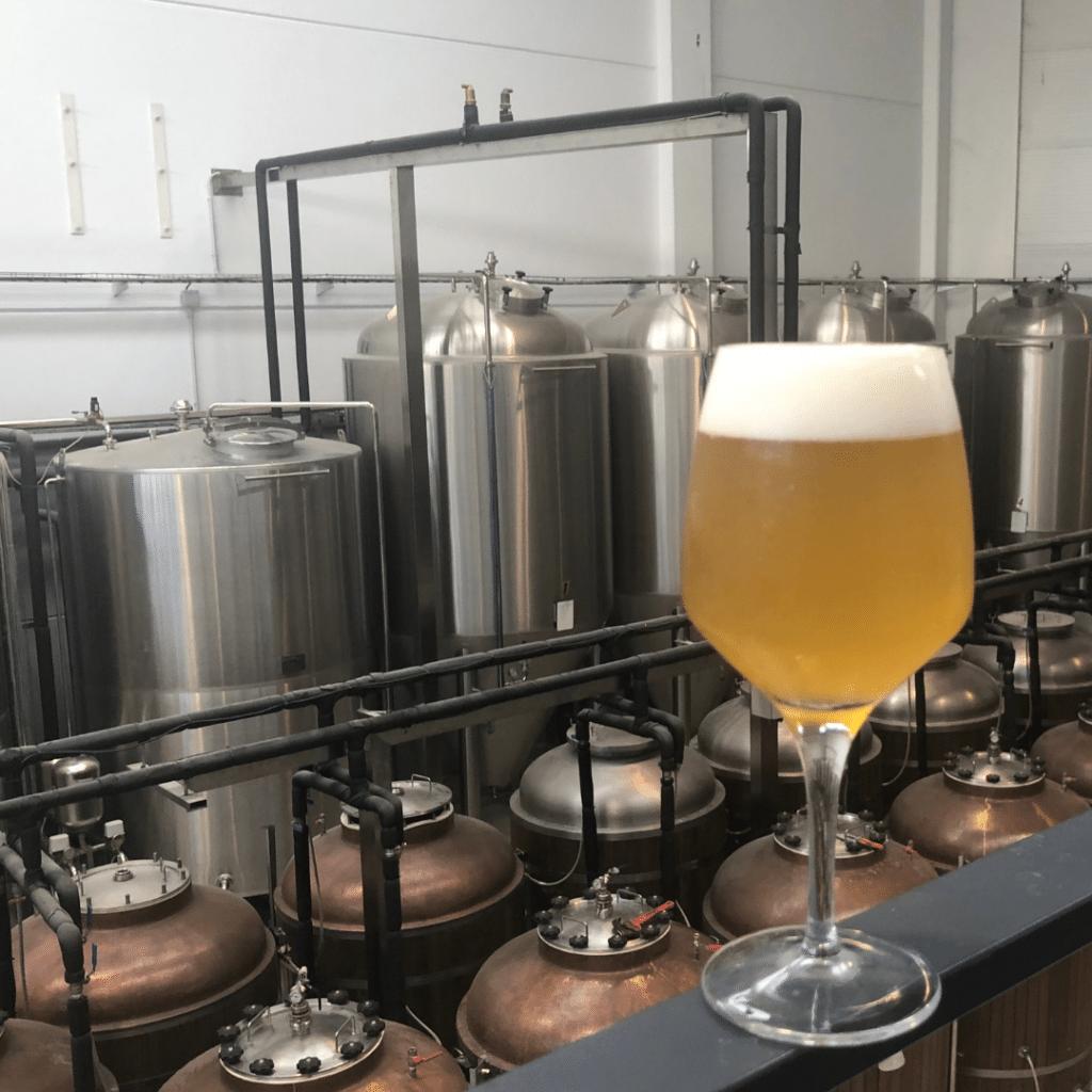 cerveza byra de sandia